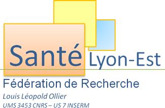 logo Lyon est